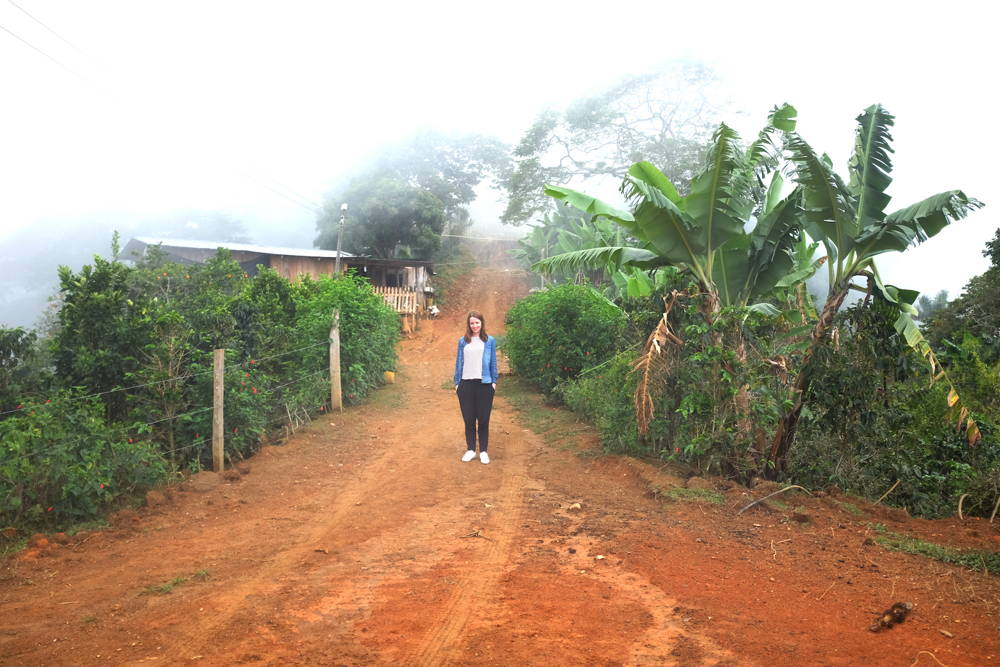 Das Kaffeeland Kolumbien: Katrins Reisebericht