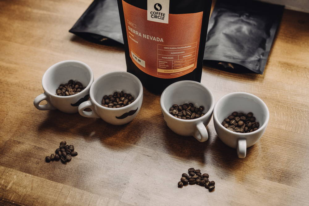 Sierra Nevada beim Cupping