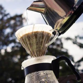 Unser Sierra Nevada Kaffee zubereitet mit dem Hario v60 Handfilter