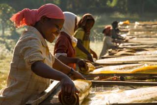 Coffeecircle in Äthiopien