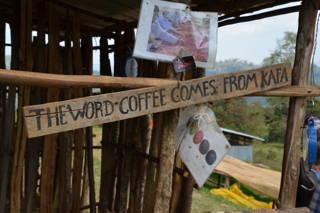 Der Ursprung des Kaffees