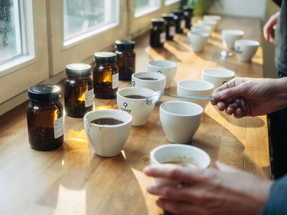 Cupping or coffee tasting of different coffees