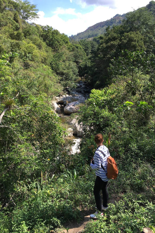 Reise in das Kaffeeland Kolumbien