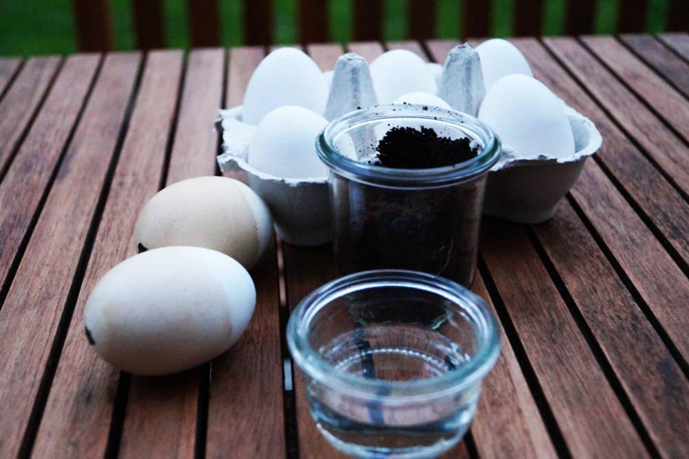 Eier, Kaffeesatz, Essig, Wasser