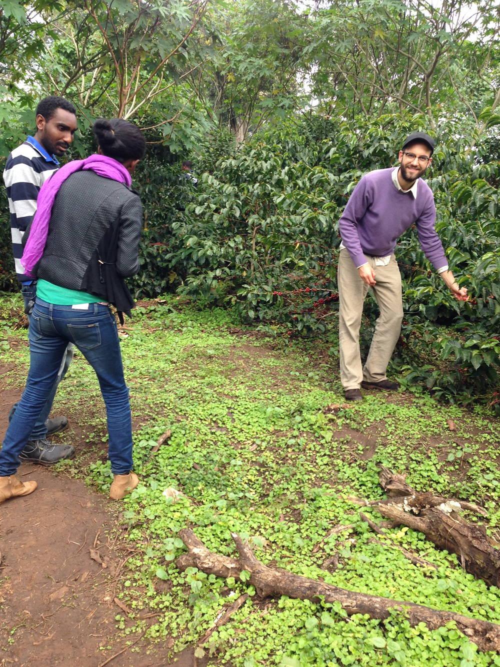 Meine Reise ins Kaffeeland und das berühmte Gesha Village