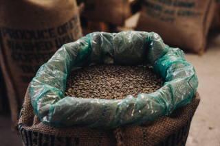 Die rohen Kaffeebohnen im Sack