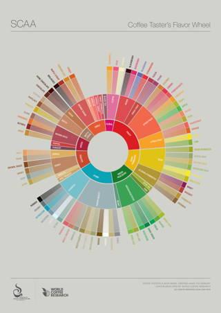 Flavour Wheel der SCAA