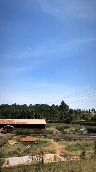 View on the farmlands