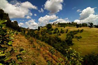 Die Kaffee-Kooperativen unserer Kaffees sind nicht immer leicht zu erreichen und liegen in mitten wunderschöner Natur.