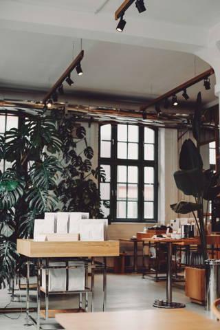 Pflanzen im Café