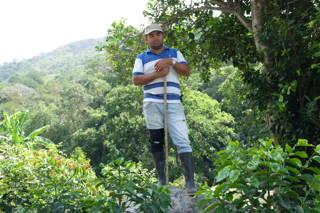 Kaffeebauer Kolumbien