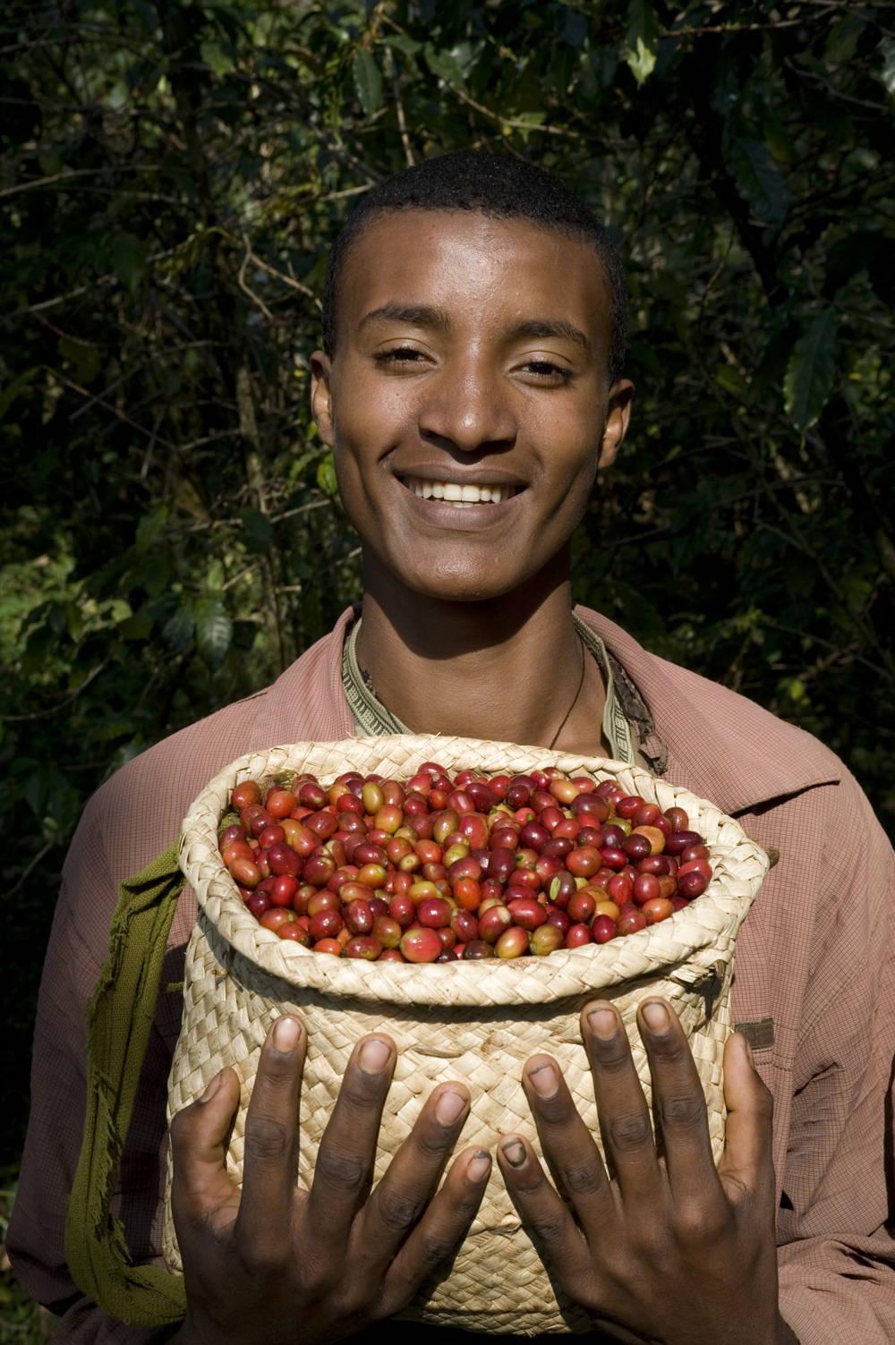 Kaffeeanbauregion Äthiopien